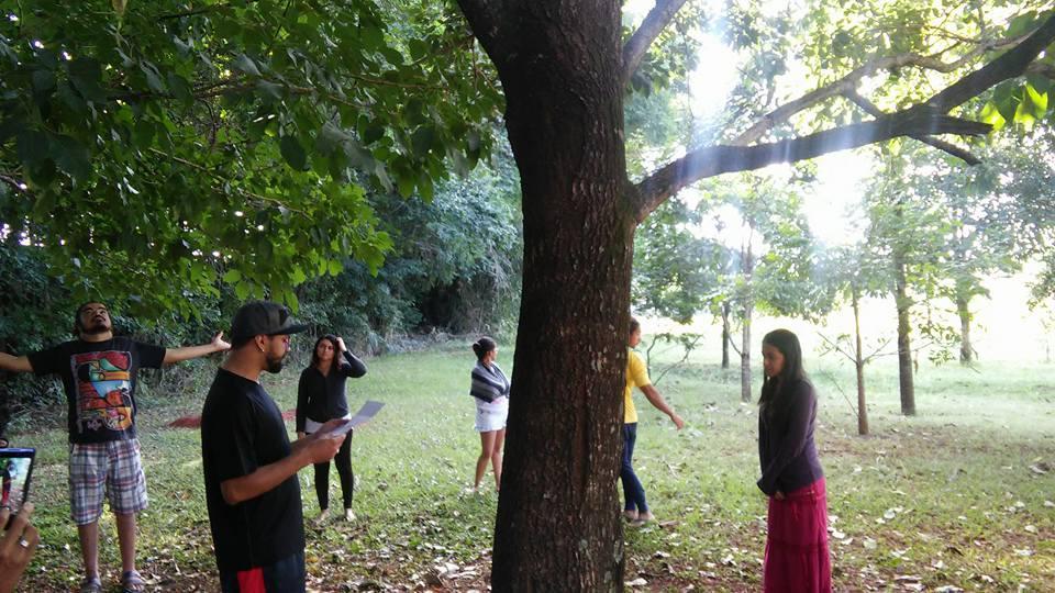 Mistica árvore do Cerrado